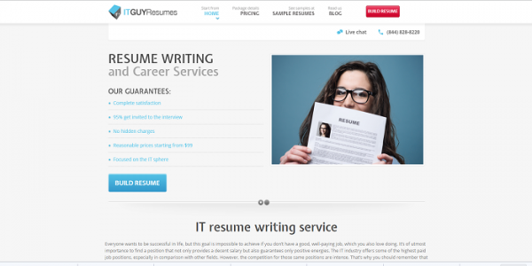 Specialist Resume Writers – IT Guy Resumes Where's the Beef?